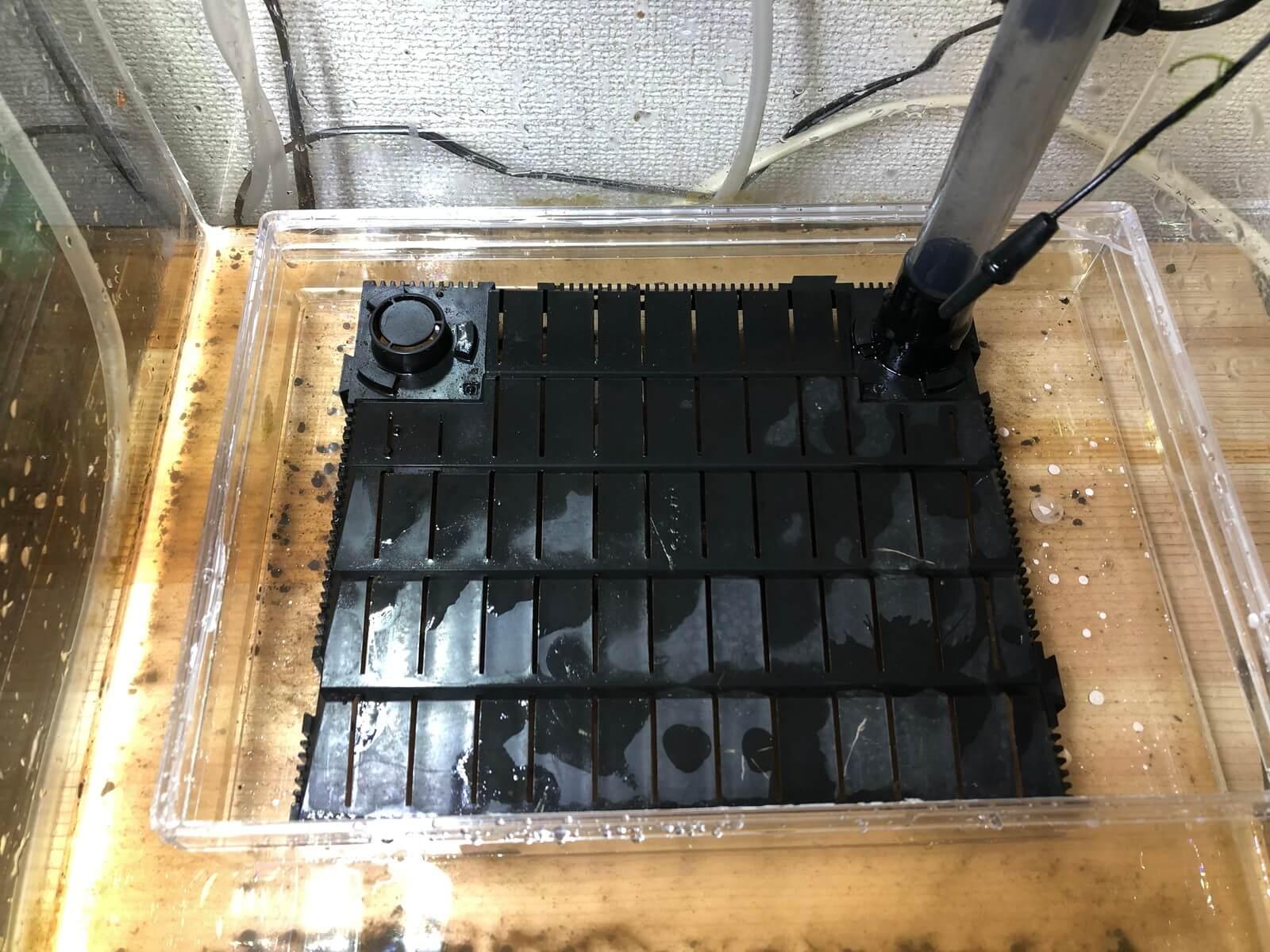 水槽に自作底面フィルター設置