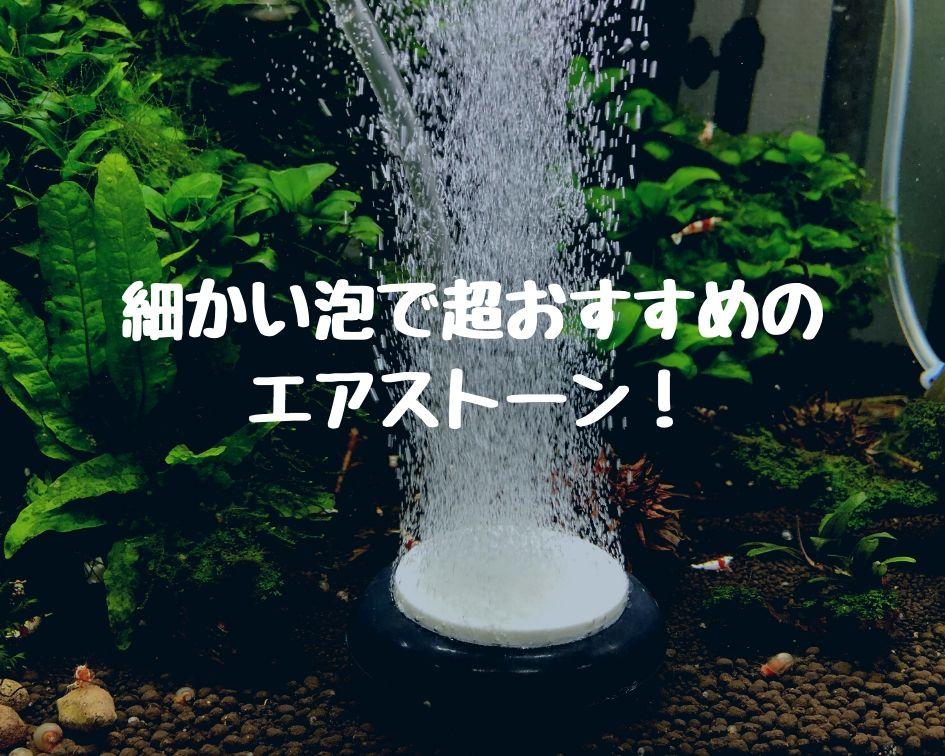 水槽 水温 下げる エアレーション